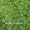 Thảm cỏ nhân tạo 20mm
